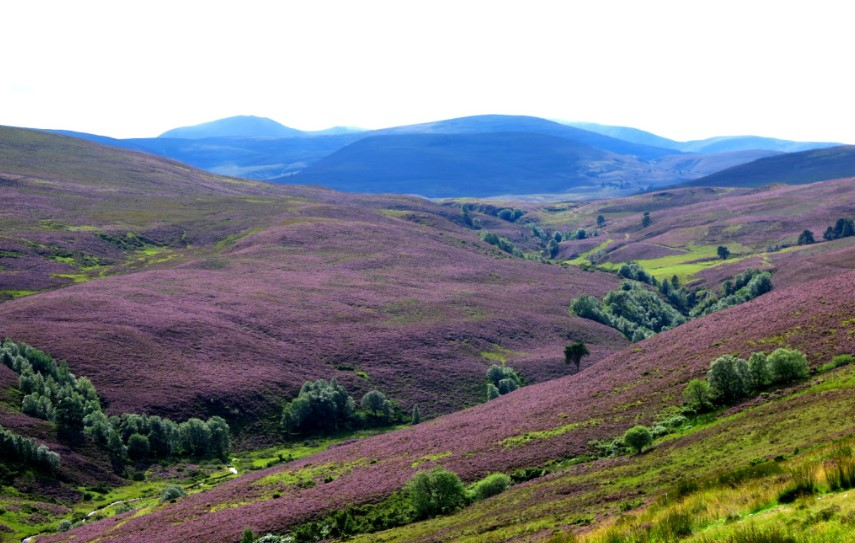 amazing views from Cairngorms National Park