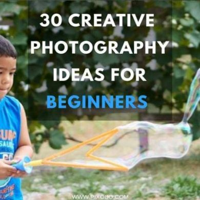 Types of Popular Photography Themes for Beginners